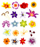 Flower vector composition Stock Photo
