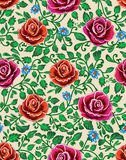 Flower vector illustration. Seamless pattern. Stock Photos