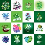 Flower vector logo Stock Photography