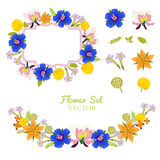 Flower Vector Set Element. Vector Collection  On White Background. Beautiful Colorful Flowers Illustration Set. Royalty Free Stock Photos