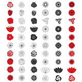 Flower vector set. Floral buds kit Royalty Free Stock Images
