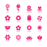 Flower vector set Royalty Free Stock Photography