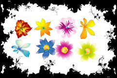 Flower vector shapes Stock Images