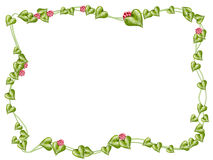 Flower and vine frame Royalty Free Stock Image