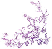 Flower and vines pattern. Drawing of purple flower and vines pattern in a white background Royalty Free Stock Images