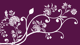 Flower and vines pattern Stock Images