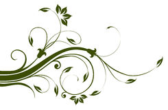 Flower and vines pattern Royalty Free Stock Image