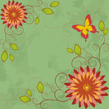 Flower vintage background. Greeting card Royalty Free Stock Photography