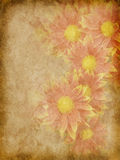 Flower vintage paper. Old paper with autumn floral pattern Royalty Free Stock Photos