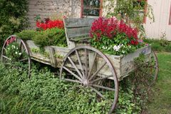 Flower Wagon Royalty Free Stock Images