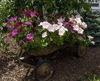 Flower Wagon Royalty Free Stock Photography