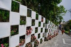 Flower wall at Ba Na Hills, Da Nang, Vietnam Stock Photo