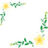 Flower wallpaper background. Flower wallpaper of frame on background Stock Photo