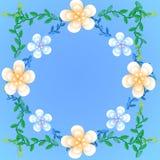 Flower wallpaper background. Flower wallpaper of frame on background Royalty Free Stock Images