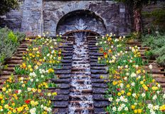 Flower water cascade Royalty Free Stock Images