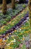 Flower water cascade Stock Photos