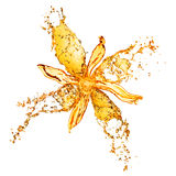 Flower from water splashes isolated Stock Photos