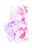 Flower watercolor illustration. Royalty Free Stock Photos