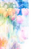 Flower watercolor illustration. Watercolor painting on paper with illustration of blossom tulip. Artistic floral abstract background vector illustration