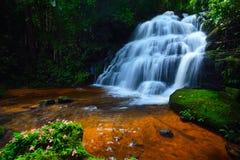 Flower waterfall Stock Image