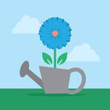 Flower in Watering Can Stock Photo