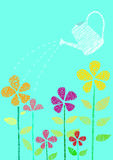 Flower and watering can Stock Photography
