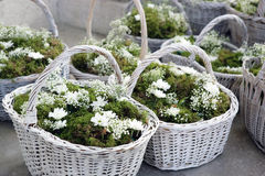 Flower Wedding Royalty Free Stock Image