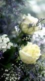 Flower wedding pastel romactic background Royalty Free Stock Photos