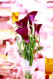 Flower on wedding tabe Stock Photos