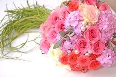 Flower on white background Stock Image