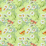 Flower, white chamomile,butterfly, watercolor, bouquet, pattern seamless. White flower  chamomile watercolor handmade  background  bouquet pattern seamless Royalty Free Stock Photos