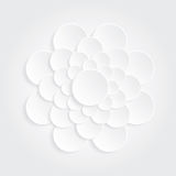 Flower white circle Royalty Free Stock Images