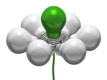 Flower of white and green light bulbs on green wire Stock Images