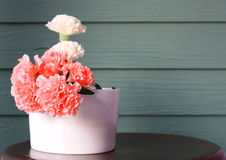 Flower with white vase. And wood wall Royalty Free Stock Images