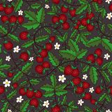 Flower, wild strawberry on a dark background. Seamless texture with flowers, leaves, wild strawberry on a dark background. Use as a pattern fill, backdrop Stock Image