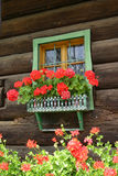 Flower window. Window with flowers on an old farm house in Alpine region of Slovenia Stock Image