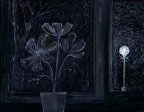 Flower in a window. Flower on a window sill. night. a street lantern Royalty Free Stock Photos