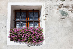 Flower Window Box Royalty Free Stock Photos