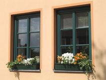 Flower windows. Photo of flower windows Royalty Free Stock Photos