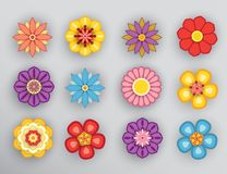 Free Flower With Shadow Stock Images - 111630064