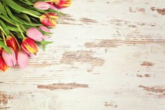 Flower and wood background Stock Photo