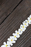 Flower on wood Stock Image