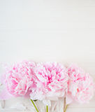 Flower wooden background Royalty Free Stock Images