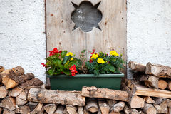 Flower wooden pot. On the wall stock photography