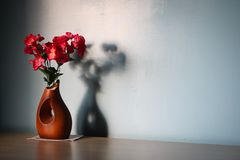 Flower, Wooden, Vase, Shadow, Table Stock Images