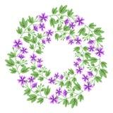 Flower wreath Stock Image