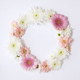 Flower wreath. Ring of flowers on a white background Stock Photos