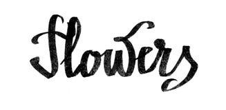 Flower& x27; s字法图画水彩 免版税库存图片