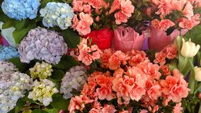 Flower& x27; s 免版税库存照片