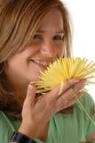 flower yellow Στοκ φωτογραφίες με δικαίωμα ελεύθερης χρήσης